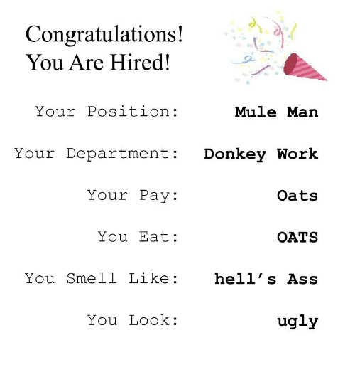 You Smell Like: Congratulations!  You Are Hired!  Your Position:  Mule Man  Your Department Donkey Work  Your Pay:  Oats  You Eat:  OATS  You Smell Like:  hell' s Ass  You Look:  ugly
