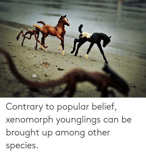 Belief: Contrary to popular belief, xenomorph younglings can be brought up among other species.