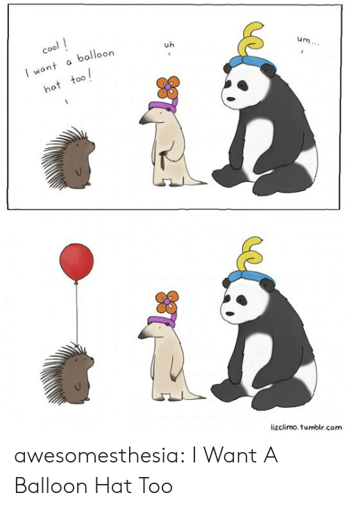 Lizclimo Tumblr: cool  balloon  uh  I want  um...  hat too  lizclimo.tumblr.com awesomesthesia:  I Want A Balloon Hat Too