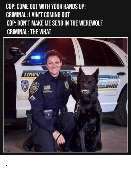Dont Make Me: COP: COME OUT WITH YOUR HANDS UP!  CRIMINAL: I AIN'T COMING OUT  COP: DON'T MAKE ME SEND IN THE WEREWOLF  CRIMINAL: THE WHAT  TOWN  1 .