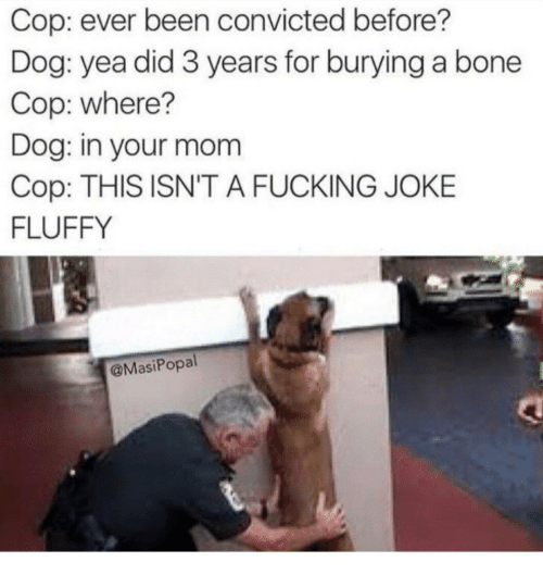 Fucking, Convicted, and Mom: Cop: ever been convicted before?  Dog: yea did 3 years for burying a bone  Cop: where?  Dog: in your mom  Cop: THIS ISN'T A FUCKING JOKE  FLUFFY  @MasiPopal