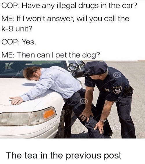 COP Have Any Illegal Drugs in the Car? ME if I Won't Answer
