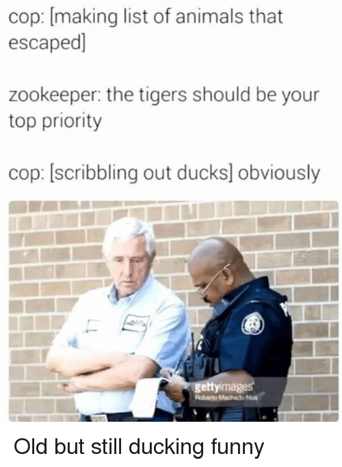 Animals, Funny, and Ducks: cop: [making list of animals that  escaped]  zookeeper: the tigers should be your  top priority  cop: [scribbling out ducks] obviously  ettyimages Old but still ducking funny