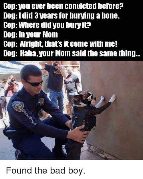 Bad, Convicted, and Mom: Cop: you ever been convicted before?  Dog: Idid 3 years for burying a bone.  Cop: Where did you bury it?  Dog: In your Mom  Cop: Aright, that's itcome with me!  Dog: Haha, your Mom said the same thing.. Found the bad boy.