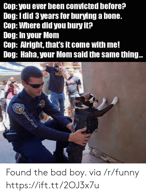 Bad, Funny, and Convicted: Cop: you ever been convicted before?  Dog: Idid 3 years for burying a bone.  Cop: Where did you bury it?  Dog: In your Mom  Cop: Aright, that's itcome with me!  Dog: Haha, your Mom said the same thing.. Found the bad boy. via /r/funny https://ift.tt/2OJ3x7u