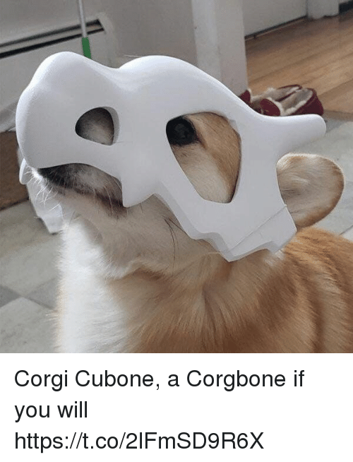 Corgi, Will, and You: Corgi Cubone, a Corgbone if you will https://t.co/2lFmSD9R6X