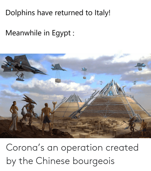 Chinese: Corona's an operation created by the Chinese bourgeois