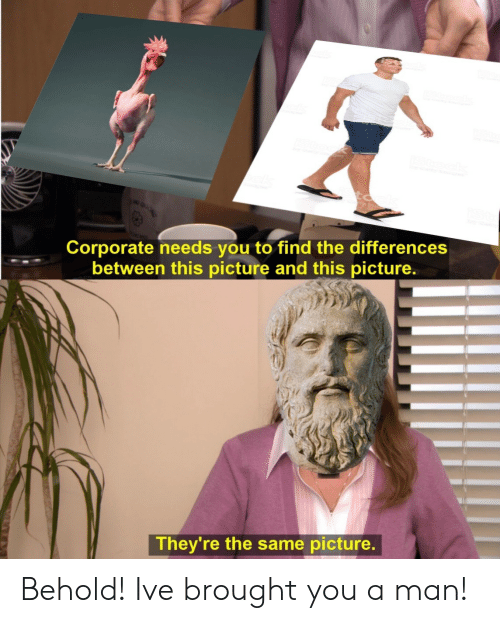 Corporate, Man, and Picture: Corporate needs you to find the differences  between this picture and this picture.  They're the same picture. Behold! Ive brought you a man!