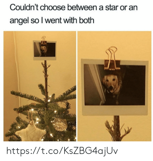 Memes, Angel, and Star: Couldn't choose between a star or an  angel so I went with both https://t.co/KsZBG4ajUv
