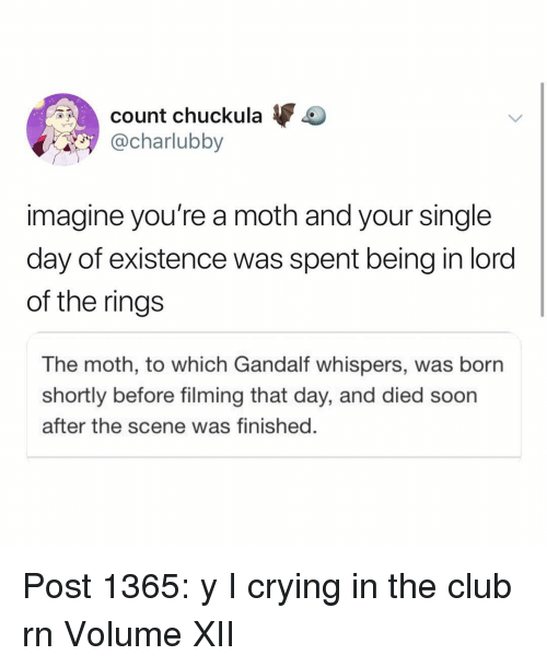 Club, Crying, and Gandalf: count chuckula  @charlubby  imagine you're a moth and your single  day of existence was spent being in lord  of the ring:s  The moth, to which Gandalf whispers, was born  shortly before filming that day, and died soon  after the scene was finished. Post 1365: y I crying in the club rn Volume XII