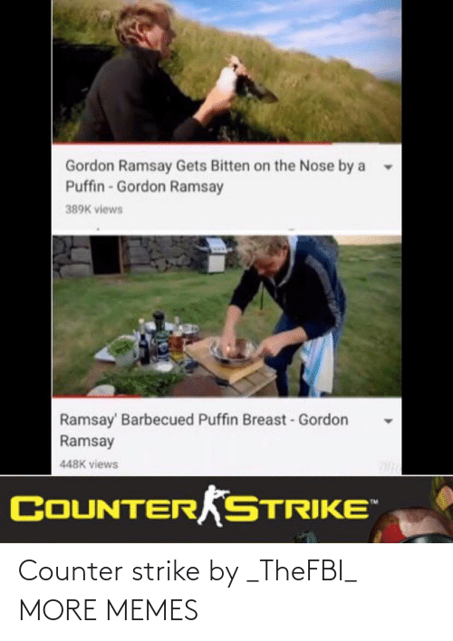 Counter: Counter strike by _TheFBI_ MORE MEMES