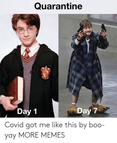 boo: Covid got me like this by boo-yay MORE MEMES