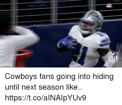 Dallas Cowboys, Football, and Nfl: Cowboys fans going into hiding until next season like.. https://t.co/aINAIpYUv9