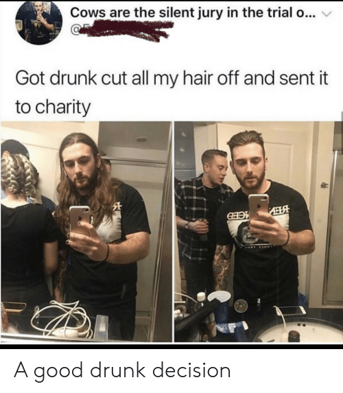 Drunk, Good, and Hair: Cows are the silent jury in the trial o...  Got drunk cut all my hair off and sent it  to charity  EНЭ A good drunk decision
