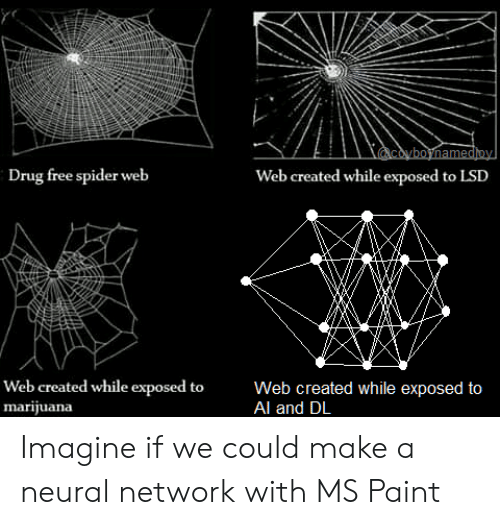 Imagine If: coyboynamedioy  Drug free spider web  Web created while exposed to LSD  Web created while exposed to  marijuana  Web created while exposed to  Al and DL Imagine if we could make a neural network with MS Paint