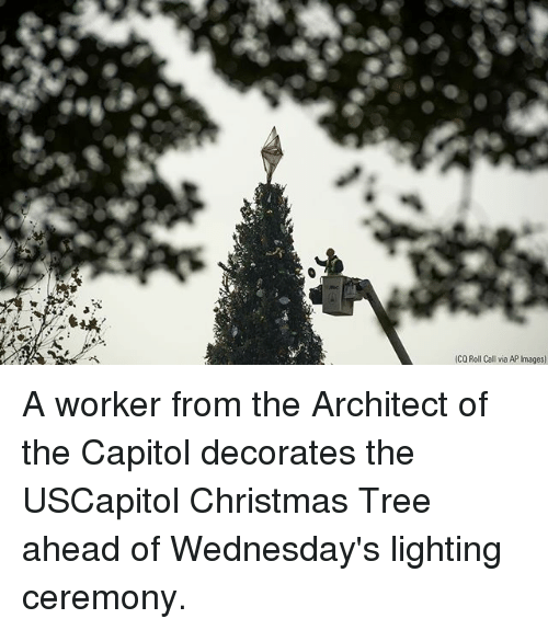Wednesdays: (CQ Roll Call via AP Images) A worker from the Architect of the Capitol decorates the USCapitol Christmas Tree ahead of Wednesday's lighting ceremony.