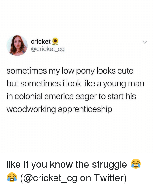 America, Cute, and Memes: cricket  @cricket_cg  sometimes my low pony looks cute  but sometimes i look like a young man  in colonial america eager to start his  woodworking apprenticeship like if you know the struggle 😂😂 (@cricket_cg on Twitter)