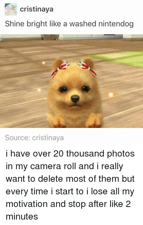 shine bright: cristinaya  Shine bright like a washed nintendog  Source: cristinaya i have over 20 thousand photos in my camera roll and i really want to delete most of them but every time i start to i lose all my motivation and stop after like 2 minutes