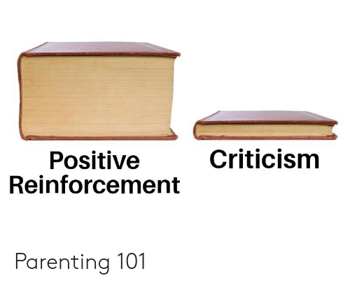 Criticism: Criticism  Positive  Reinforcement Parenting 101