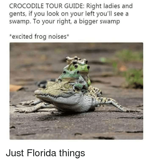 Your Right: CROCODILE TOUR GUIDE: Right ladies and  gents, if you look on your left you'll see a  swamp. To your right, a bigger swamp  *excited frog noises* Just Florida things