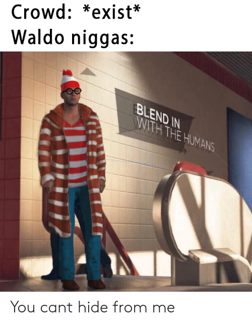 Can, Hide, and You: Crowd: *exist*  Waldo niggas:  BLEND IN  WITH THE HUMANS You cant hide from me