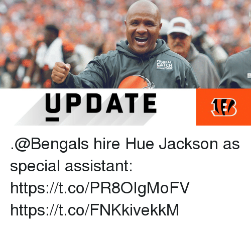 Memes, Bengals, and 🤖: CRUCIAL  CATCH  UPDATE .@Bengals hire Hue Jackson as special assistant: https://t.co/PR8OIgMoFV https://t.co/FNKkivekkM