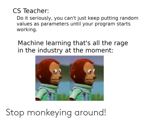 Learning: CS Teacher:  Do it seriously, you can't just keep putting random  values as parameters until your program starts  working.  Machine learning that's all the rage  in the industry at the moment: Stop monkeying around!