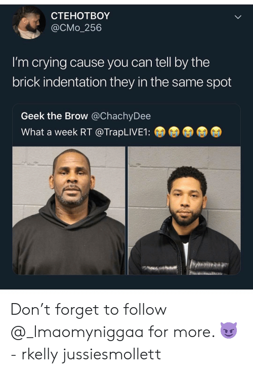 Crying, Memes, and 🤖: CTEHOTBOY  @CMo_256  I'm crying cause you can tell by the  brick indentation they in the same spot  Geek the Brow @ChachyDee  What a week RT @TrapLIVE1: Don't forget to follow @_lmaomyniggaa for more. 😈- rkelly jussiesmollett