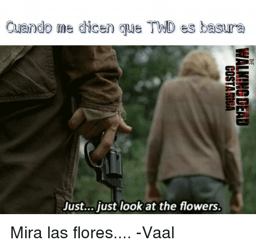 Memes, Flower, and Flowers: Cuando me dicen que TMND ess basura  Just... just look at the flowers. Mira las flores....  -Vaal