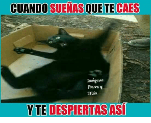25 Best Memes About Frases Frases Memes