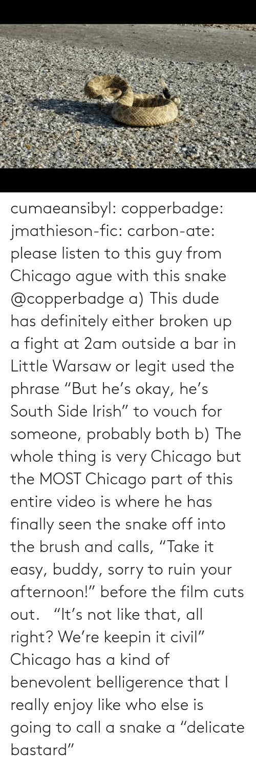 "call: cumaeansibyl: copperbadge:  jmathieson-fic:  carbon-ate: please listen to this guy from Chicago ague with this snake @copperbadge  a) This dude has definitely either broken up a fight at 2am outside a bar in Little Warsaw or legit used the phrase ""But he's okay, he's South Side Irish"" to vouch for someone, probably both b) The whole thing is very Chicago but the MOST Chicago part of this entire video is where he has finally seen the snake off into the brush and calls, ""Take it easy, buddy, sorry to ruin your afternoon!"" before the film cuts out.    ""It's not like that, all right? We're keepin it civil"" Chicago has a kind of benevolent belligerence that I really enjoy like who else is going to call a snake a ""delicate bastard"""