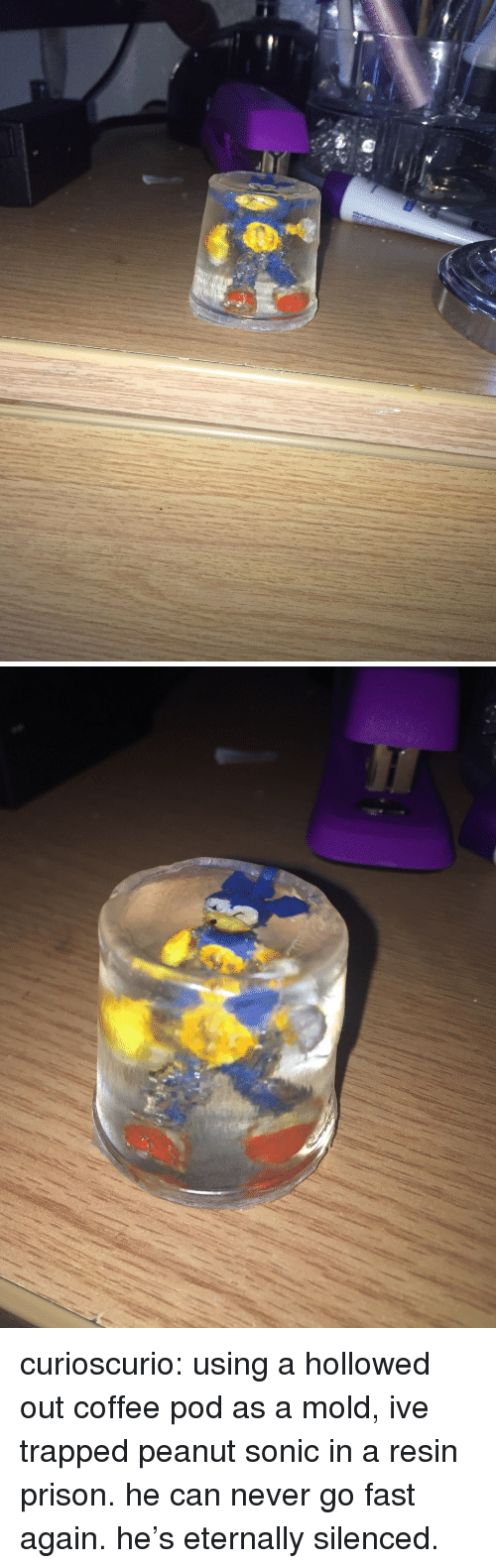 Tumblr, Prison, and Blog: curioscurio: using a hollowed out coffee pod as a mold, ive trapped peanut sonic in a resin prison. he can never go fast again. he's eternally silenced.