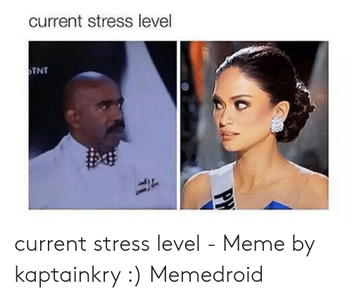 Funny Stress Memes: current stress level  TNT  PH current stress level - Meme by kaptainkry :) Memedroid
