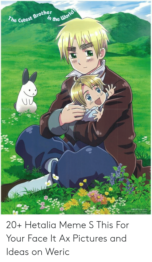 Hetalia Meme: Cutest Brother 20+ Hetalia Meme S This For Your Face It Ax Pictures and Ideas on Weric