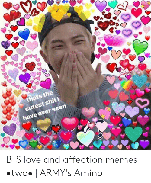 Cutest Shit I Have Ever Seen Bts Love And Affection Memes Two