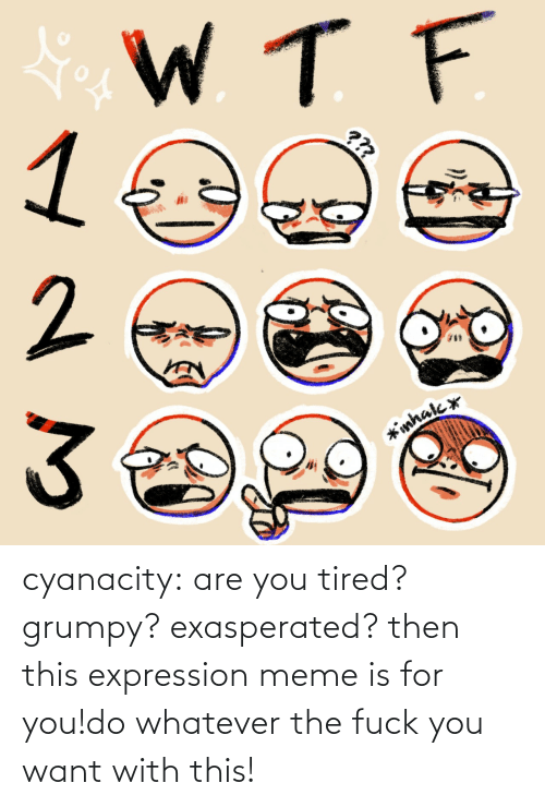 the fuck: cyanacity:  are you tired? grumpy? exasperated? then this expression meme is for you!do whatever the fuck you want with this!