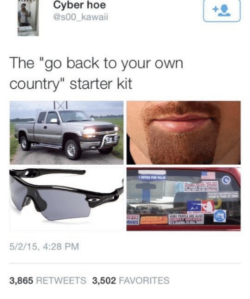 """Starter Kit: Cyber hoe  @s00_kawaii  The """"go back to your own  country"""" starter kit  IXI  VOTES FOR PALI  5/2/15, 4:28 PM  3,865 RETWEETS 3,502 FAVORITES"""