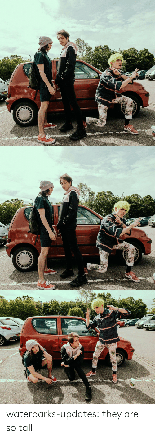 Tumblr, Blog, and Com: D.  HKS7KTL  4   D  HNS7NTL   RST waterparks-updates: they are so tall