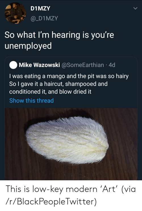 Mango: D1 MZY  @_D1MZY  So what I'm hearing is you're  unemployed  Mike Wazowski @SomeEarthian 4d  I was eating a mango and the pit was so hairy  So I gave it a haircut, shampooed and  conditioned it, and blow dried it  Show this thread This is low-key modern 'Art' (via /r/BlackPeopleTwitter)