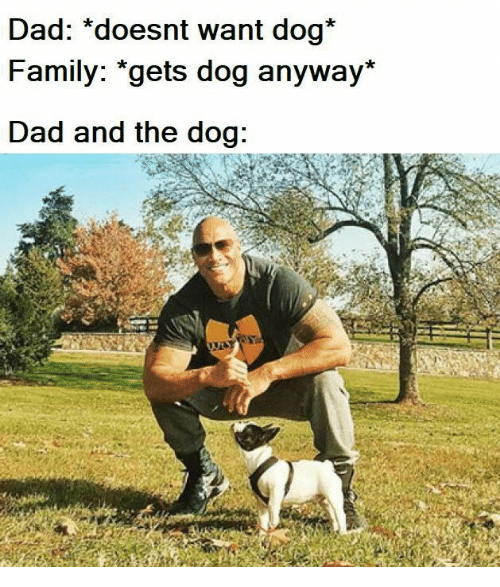 """Dad, Family, and Dog: Dad: *doesnt want dog*  Family: """"gets dog anyway*  Dad and the dog:"""