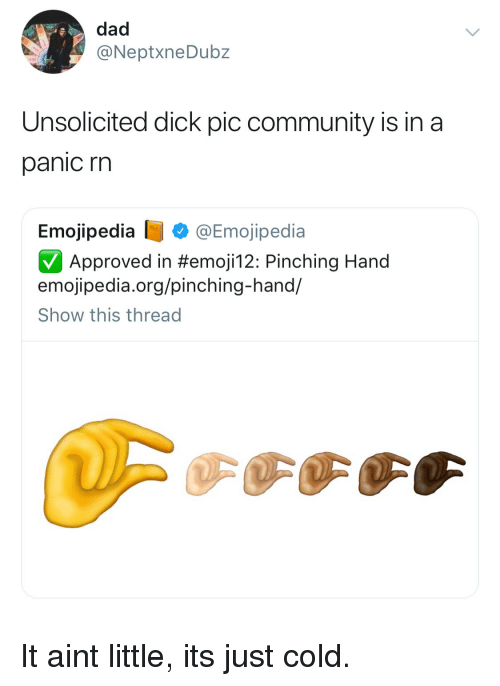 unsolicited: dad  @NeptxneDubz  Unsolicited dick pic community is in a  panic rn  Emojipedia @Emojipedia  Approved in #emojil 2: Pinching Hand  emojipedia.org/pinching-hand/  Show this thread It aint little, its just cold.
