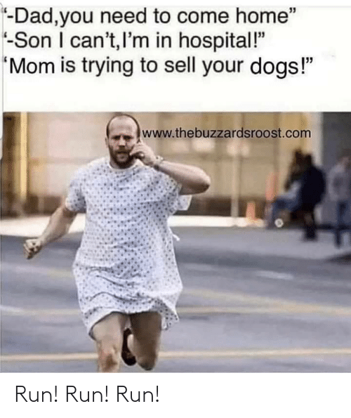 "Dad, Dogs, and Run: -Dad,you need to come home""  -Son I can't,I'm in hospital!""  Mom is trying to sell your dogs!""  www.thebuzzardsroost.com Run! Run! Run!"