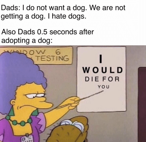 Dogs, Memes, and 🤖: Dads: I do not want a dog. We are not  getting a dog. I hate dogs.  Also Dads 0.5 seconds after  adopting a doq:  oW 6  TESTING  WOULD  DIE FOR  YOU