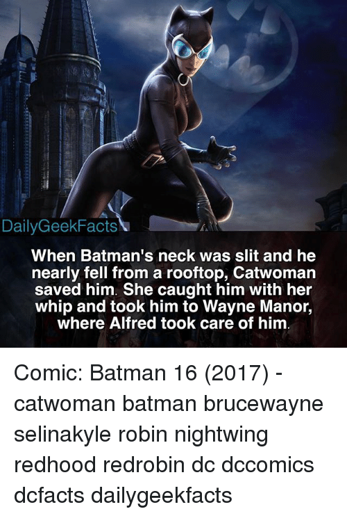 manor: DailyGeekFacts  When Batman's neck was slit and he  nearly fell from a rooftop, Catwomarn  saved him. She caught him with her  whip and took him to Wayne Manor,  where Alfred took care of him Comic: Batman 16 (2017) - catwoman batman brucewayne selinakyle robin nightwing redhood redrobin dc dccomics dcfacts dailygeekfacts