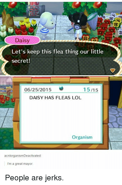 Jerks: Daisy  20  Let's keep this flea thing our little  secret!  06/25/2015  15/15  DAISY HAS FLEAS LOL  Organism  acnlorganismDeactivated  I'm a great mayor People are jerks.