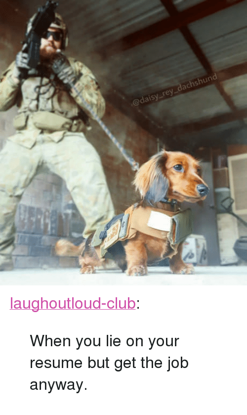 "When You Lie On Your Resume: @daisy rey_dachshund <p><a href=""http://laughoutloud-club.tumblr.com/post/166353881370/when-you-lie-on-your-resume-but-get-the-job"" class=""tumblr_blog"">laughoutloud-club</a>:</p>  <blockquote><p>When you lie on your resume but get the job anyway.</p></blockquote>"