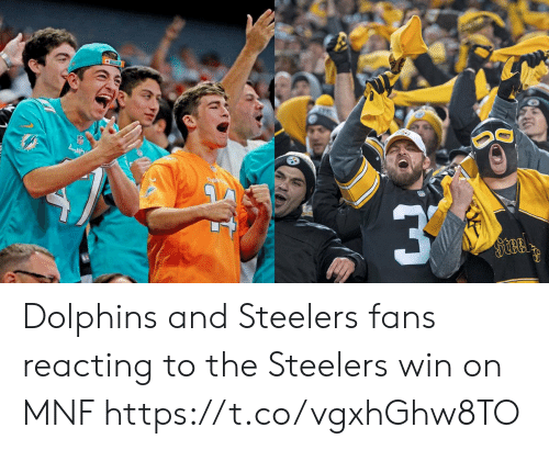 Dolphins: Dal  Steel Dolphins and Steelers fans reacting to the Steelers win on MNF https://t.co/vgxhGhw8TO
