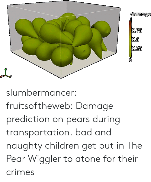 Pears: damage slumbermancer: fruitsoftheweb:  Damage prediction on pears during transportation.  bad and naughty children get put in The Pear Wiggler to atone for their crimes