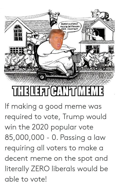 Vote Trump: DAMN ILLEGALS!  THEy'RE DESTROYIN6  THIS CouNtRy!!  THE LEFT  CAN'T MEME If making a good meme was required to vote, Trump would win the 2020 popular vote 85,000,000 - 0. Passing a law requiring all voters to make a decent meme on the spot and literally ZERO liberals would be able to vote!