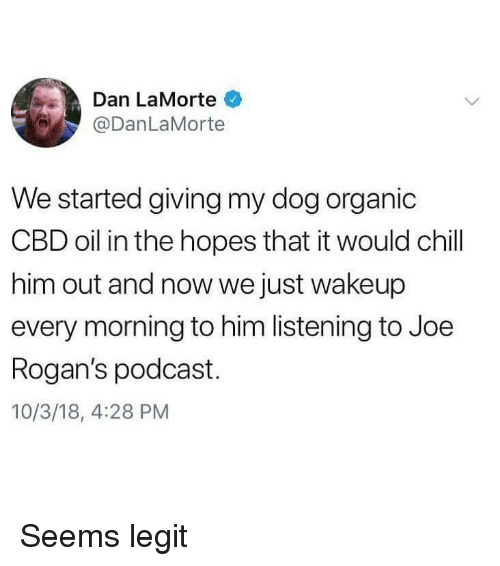 Chill, Dog, and Podcast: Dan LaMorte  @DanLaMorte  We started giving my dog organic  CBD oil in the hopes that it would chill  him out and now we just wakeup  every morning to him listening to Joe  Rogan's podcast.  10/3/18, 4:28 PM Seems legit